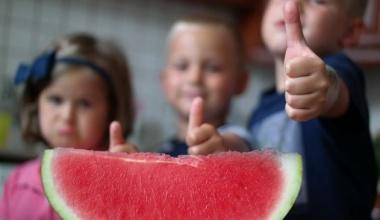 A görögdinnye egy antioxidáns bomba!