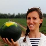 Szabó Henrietta - Ms. Melon--Értékesítő